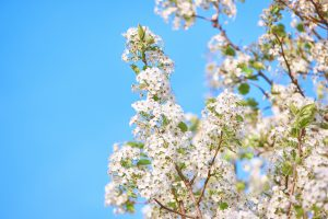 5 Skin Care Changes To Make This Spring